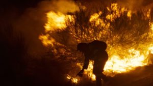 ARCHIVO | Una escena de O que arde, de Oliver Laxe, con un incendio real en Galicia