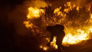 ARXIU | Un escena de O que arde, d'Oliver Laxe, amb un incendi real a Galícia