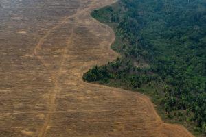 VICTOR MORIYAMA/THE NEW YORK TIMES | Une zone boisée brûlée par des cultivateurs de soja à Porto Velho, État de Rondônia, dans l'Amazonie brésilienne
