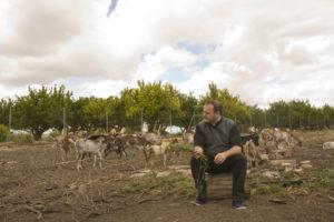 CELIA MACÍAS | Emulant un dels seus poetes referents, Miguel Hernández, Contreras es va fotografiar envoltat com el pastor d'un ramat
