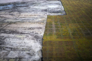 IAN WILLS/PANOS PICTURES | Destruction de la couverture végétale pour l'exploitation de sables bitumineux à Fort Hills, Alberta, sous la responsabilité de Suncor, Total et Teck