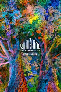 DANIEL MERCADANTE | El cartell de la Quinzena de Realitzadors 2021 a Canes, a partir d'una foto de llarga exposició, <em>The Enchanted Forest</em>, de l'estatunidenc Mercadante