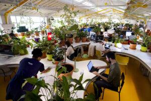 JÉRÔME GENCE | L'espace de coworking <em>Second Home</em> à Lisbonne, décoré d'un millier de plantes, comme un exemple de télétravail pour des citoyens de toute l'Europe qui déménagent dans une ville plus calme et moins chère